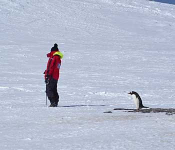 a-day-in-antarctica