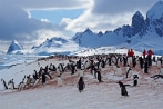 antarctica-for-accord