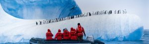 chinstrap penguins National Geographic