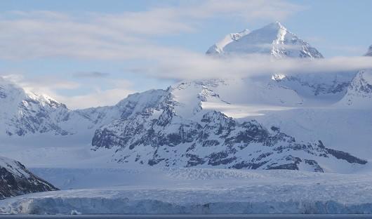 South Georgia - Antarctica Travel Centre Alex Burridge