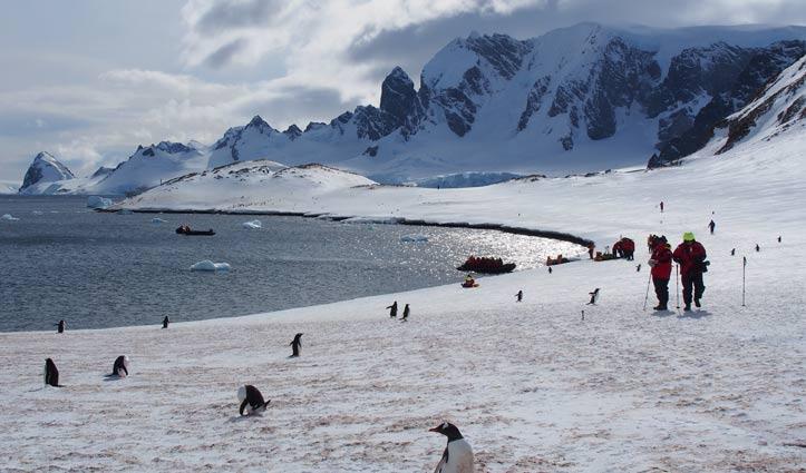 cuverville-island-antarctic-peninsula-hayley-crowden