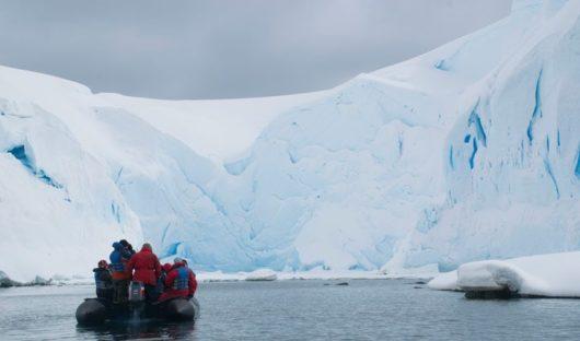 south-georgia-foynhaven-ice-1-alex-burridge