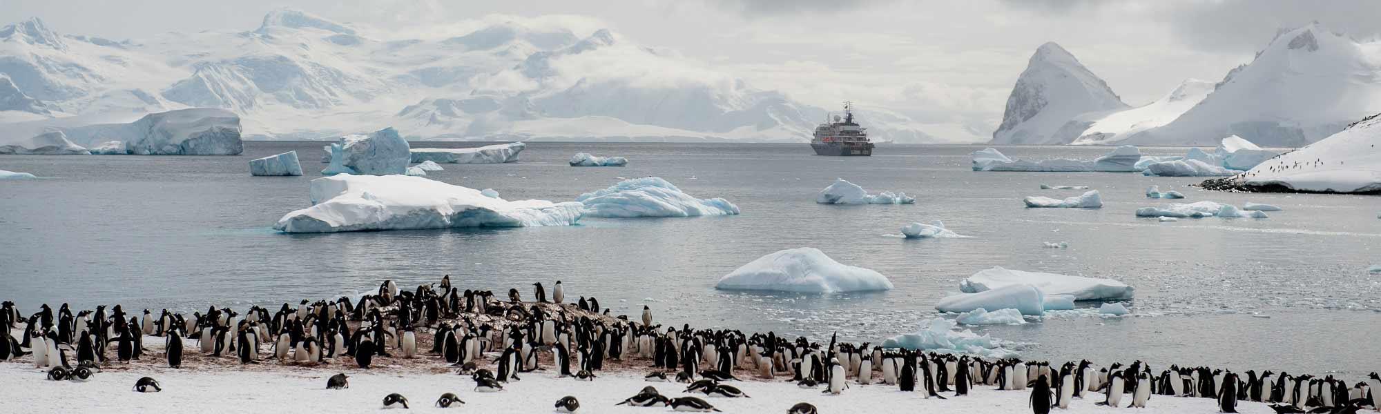 World-Leading Luxury & Expedition Ships