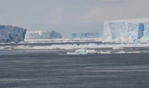 Weddell-Sea-tabular-icebergs