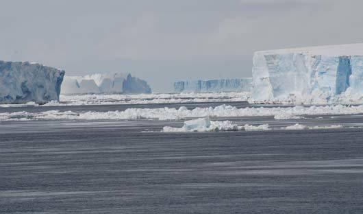 Weddell-Sea-tabular-icebergs