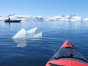 Kayaking in Antarctica Peninsula by Sue Inglis