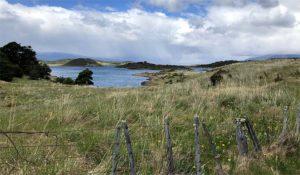 Gable Island Patagonia