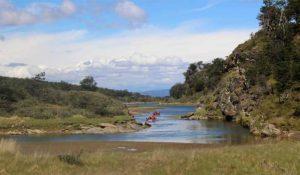 Ushuaia day tour, Canoeing Tierra Del Fuego