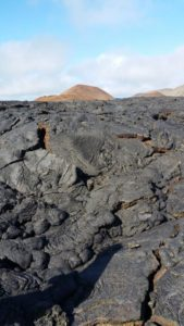 Lava Flows, Galapagos Islands by Amanda Coombes