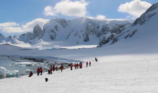 trekking in antarctica