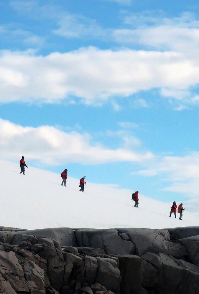 Hikers by Liane Simpson