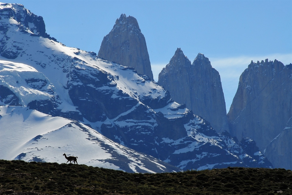 Torres Del Paine by Mary Shiel
