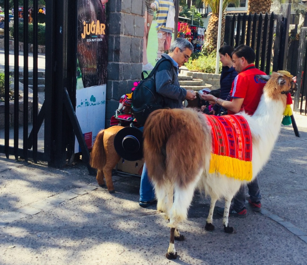 Street Vendor using a colourful Llama to attract customers, Fenicular Railway in Santiago, Chile by Rod Palmer