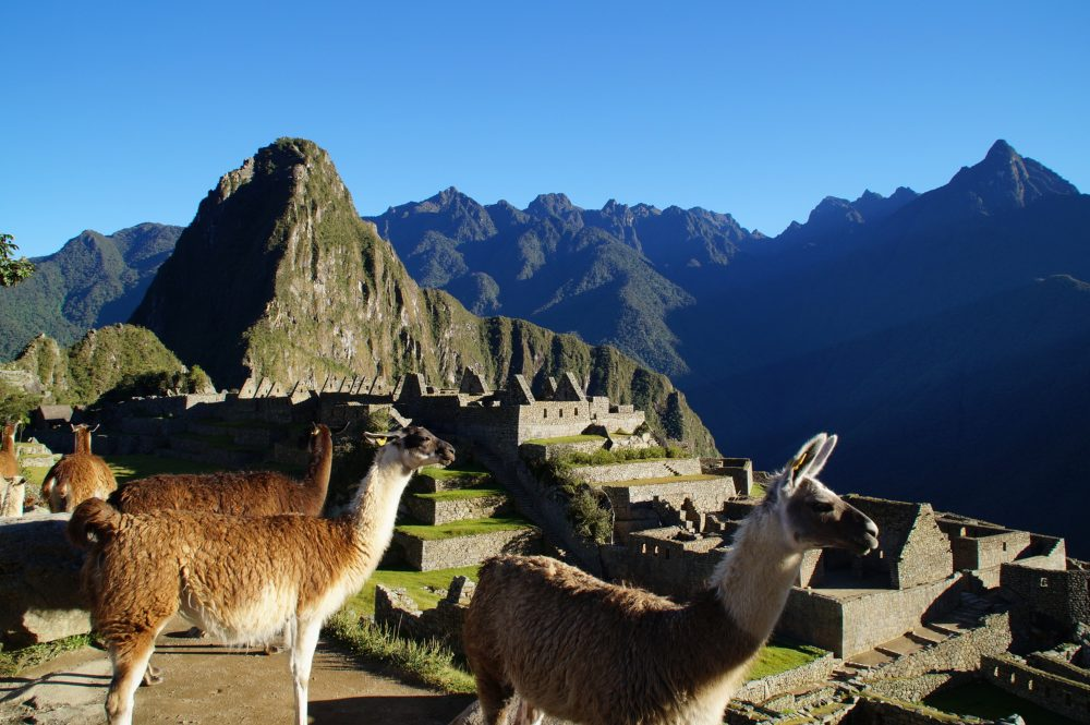 Machu Picchu by David Kaufmann