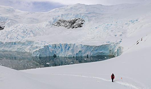 Neko Harbour Glacier