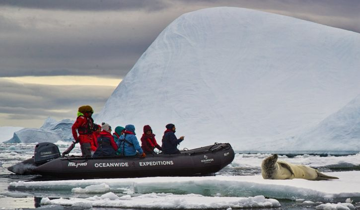 Zodiac Cruising, Oceanwide Expeditions