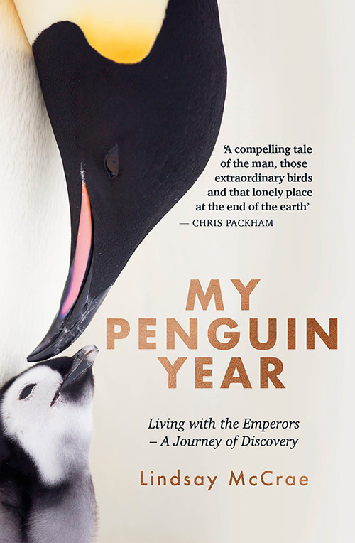 My Penguin Year - Lindsay Mcrae